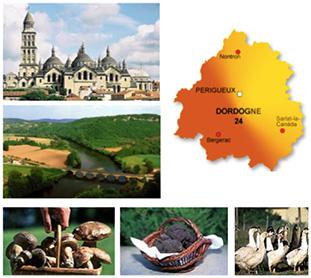 Offre d'emploi - Médecin du travail - Dordogne (Aquitaine).